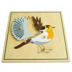 Puzzle - Szkielet ptaka