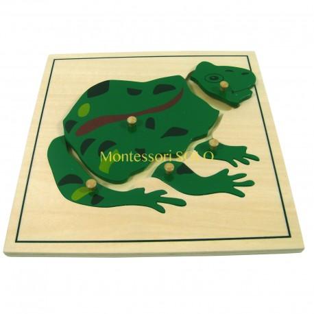 Puzzle - Żaba